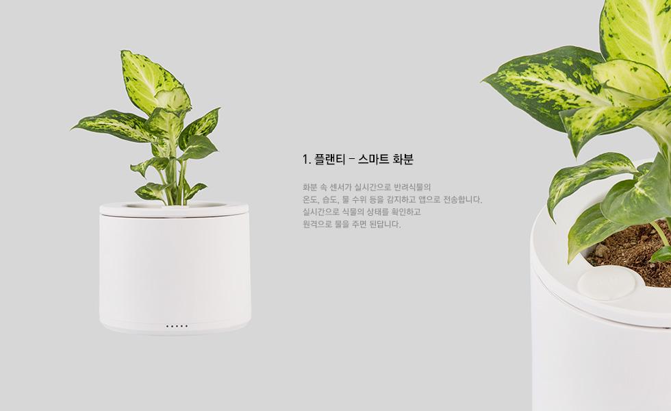 1.플렌티 - 스마트 화분: 화분 속 센서가 실시간으로 반려식물의 온도, 습도, 물 수위등을 감지하고 앱으로 전송합니다. 실시간으로 식물의 상태를 확인하고 원격으로 물을 주면 된답니다.