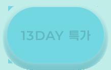 13DAY 특가